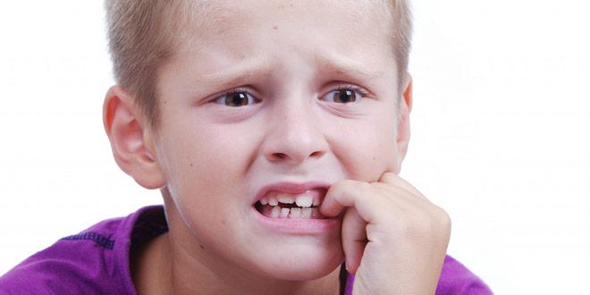 lezut-zuby