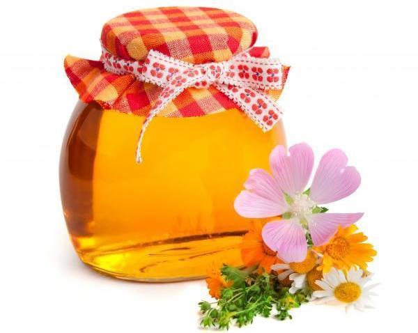 мед и травы от стоматита