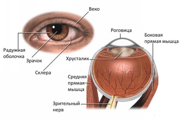симптомы глаукомы