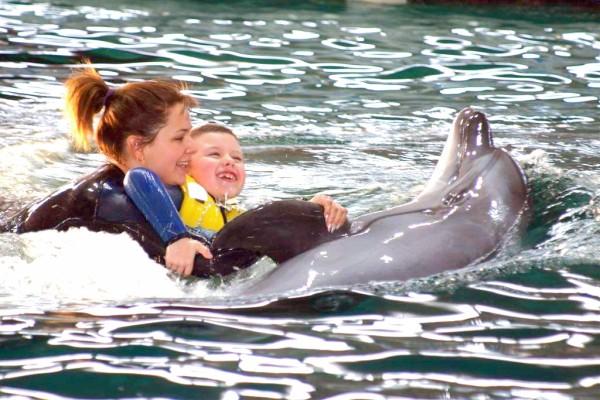 дельфинотерапия в германии