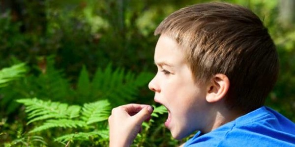 Первая помощь ребенку при отравлении бытовой химией или лекарствами: что необходимо сделать в первую очередь и чего делать нельзя?