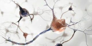 Лечение рассеянного склероза у детей в Израиле