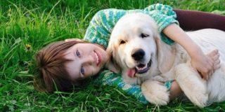 Как избавить ребенка от аллергии не избавляясь от собаки?