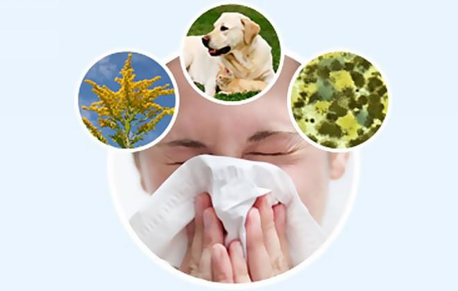 аллергия на плесень в квартире симптомы