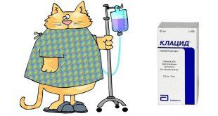 Антибиотик Клацид для детей