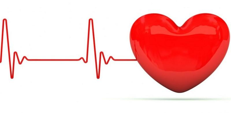 Хорда в сердце у ребенка — Сердце